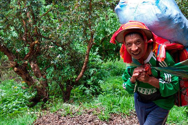 ¿Será necesario contratar porteadores para el Camino Inca?
