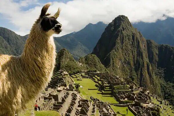 Seguridad durante el viaje hacia Machu Picchu