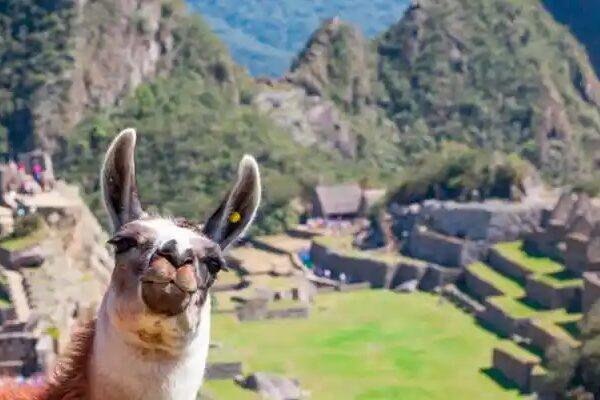 ¡Perú, país multicultural!