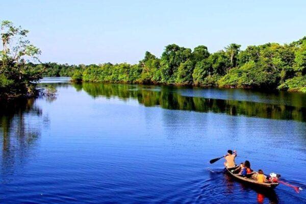 La vida animal en el río más largo del mundo, El Amazonas